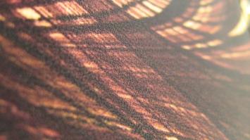 Savana Shopper - close_up